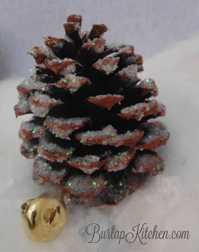 pine cone final