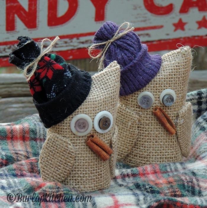 TP Owls